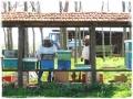 cenacolo-2013022