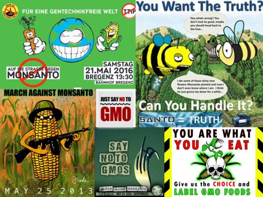 just say no to gmo poster
